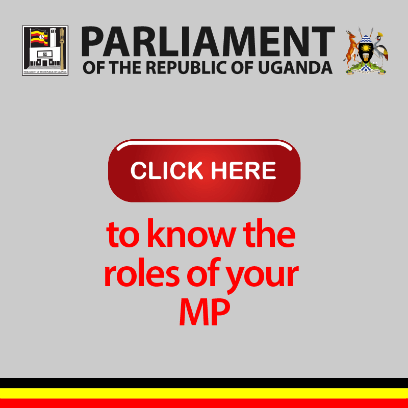 Parliament roles of mps