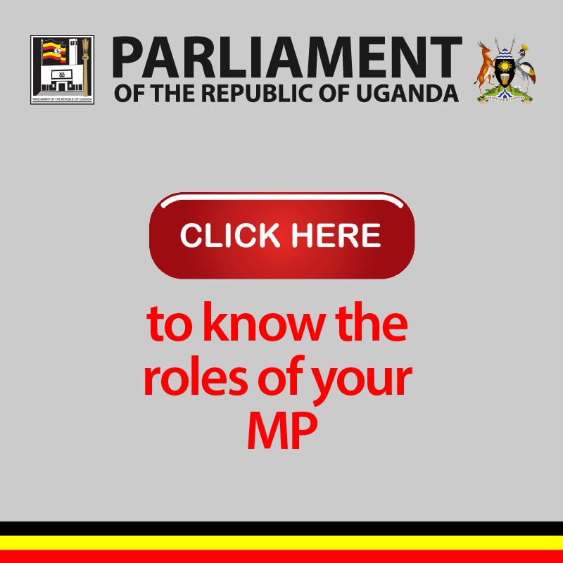 Parliament roles of mps